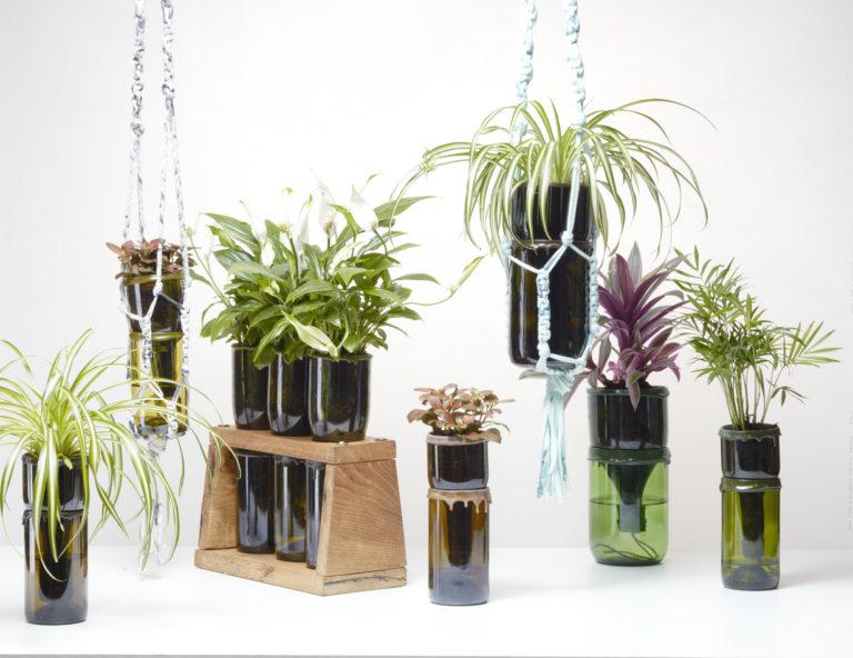 Wijnflessen worden omgetoverd tot handige potten met lont en waterreservoir. Hierdoor kunnen de planten precies zoveel water opnemen als ze nodig hebben. Daarbij hoeven ze slechts eens in de 1 a 2 weken bijgevuld te worden